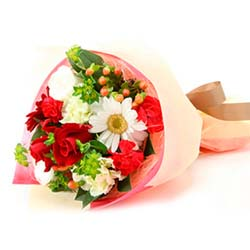 send Bunch of 12 roses to mysore