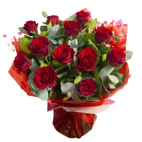 Bunch of 20 classic Red Roses