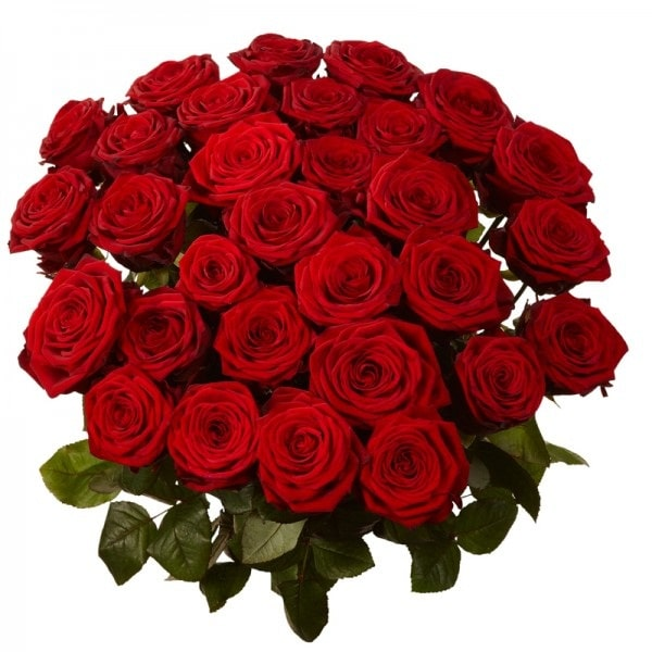 Valentine Bunch of 30 Red Roses