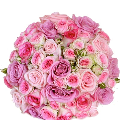 Bunch of 30 Mixed Shades of Pink Roses