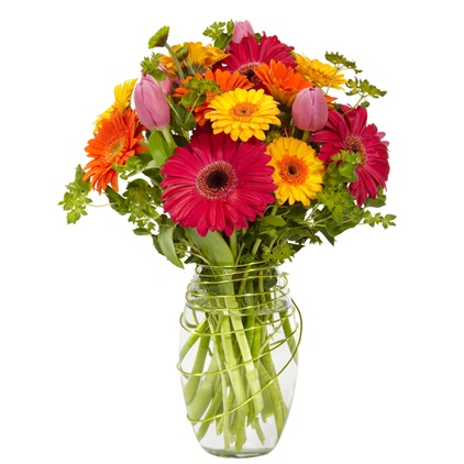 12 different color gerberas in a vase