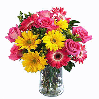 Send 12 Different Colors Gerberas in A Vase to mysore