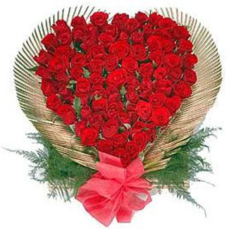 Valentine Roses delivery in mysore