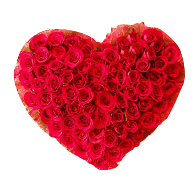 send valentines day roses to mysore